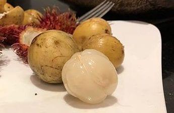 泰國 龍貢果
