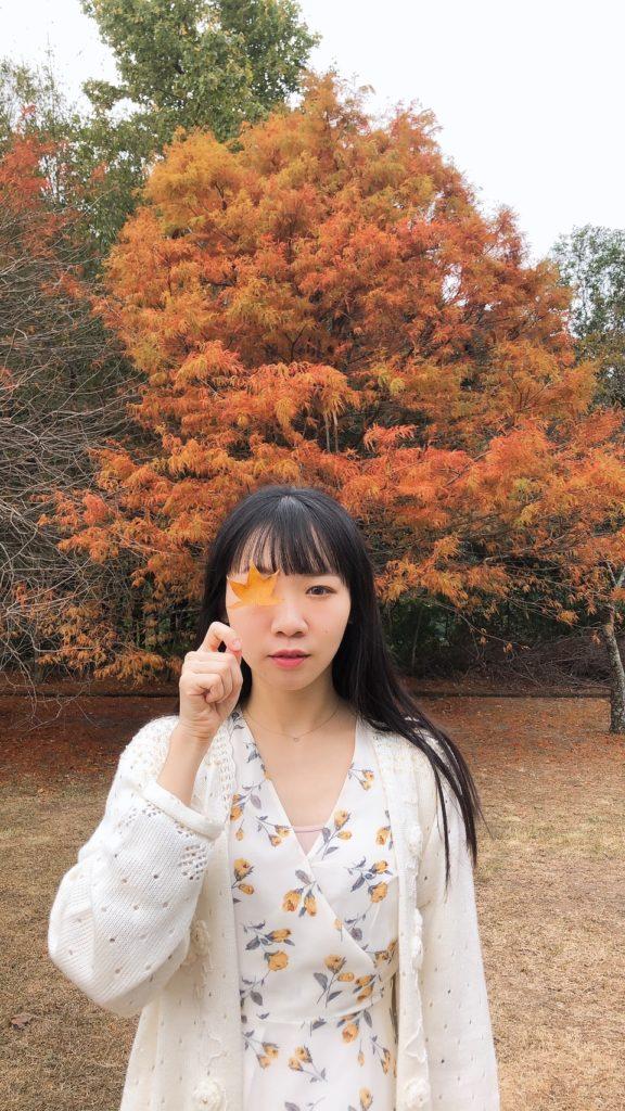 奧萬大森林遊樂區賞楓